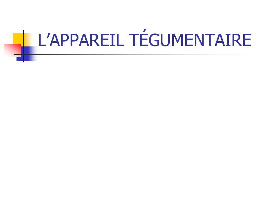 LAPPAREIL TÉGUMENTAIRE