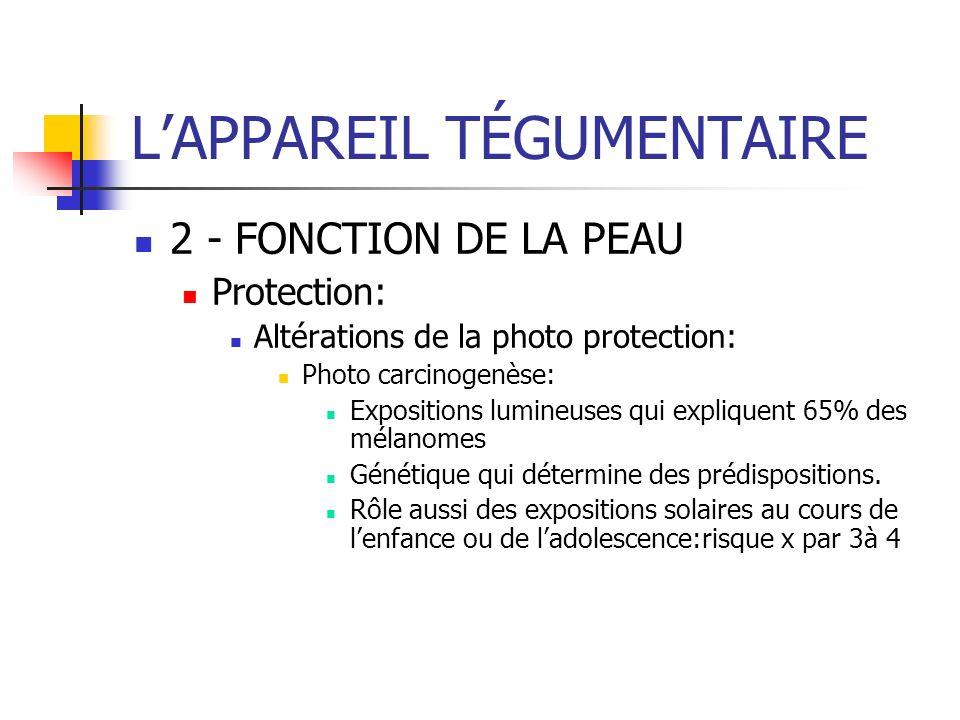 LAPPAREIL TÉGUMENTAIRE 2 - FONCTION DE LA PEAU Protection: Altérations de la photo protection: Photo carcinogenèse: Expositions lumineuses qui expliqu