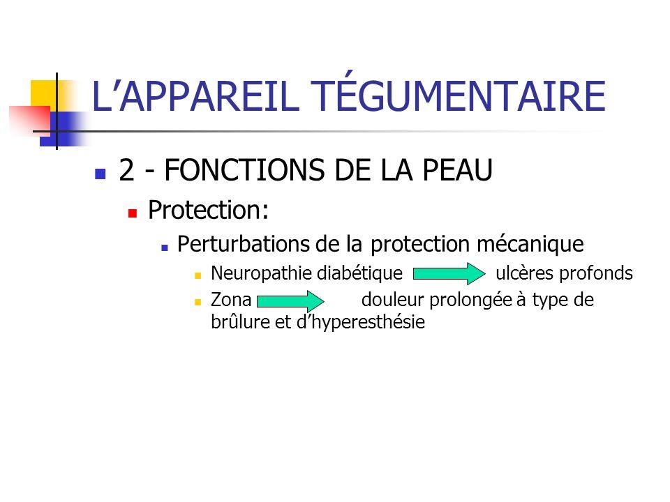 LAPPAREIL TÉGUMENTAIRE 2 - FONCTIONS DE LA PEAU Protection: Perturbations de la protection mécanique Neuropathie diabétiqueulcères profonds Zonadouleu