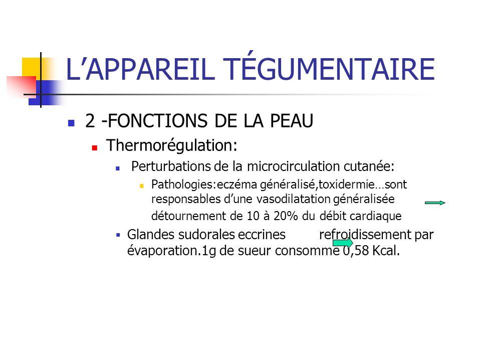 LAPPAREIL TÉGUMENTAIRE 2 -FONCTIONS DE LA PEAU Thermorégulation: Perturbations de la microcirculation cutanée: Pathologies:eczéma généralisé,toxidermi