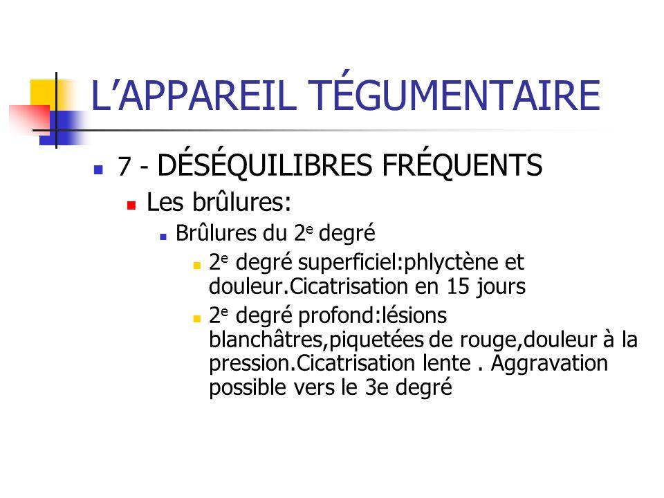 LAPPAREIL TÉGUMENTAIRE 7 - DÉSÉQUILIBRES FRÉQUENTS Les brûlures: Brûlures du 2 e degré 2 e degré superficiel:phlyctène et douleur.Cicatrisation en 15