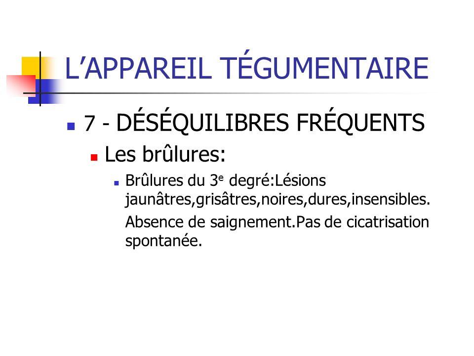 LAPPAREIL TÉGUMENTAIRE 7 - DÉSÉQUILIBRES FRÉQUENTS Les brûlures: Brûlures du 3 e degré:Lésions jaunâtres,grisâtres,noires,dures,insensibles. Absence d