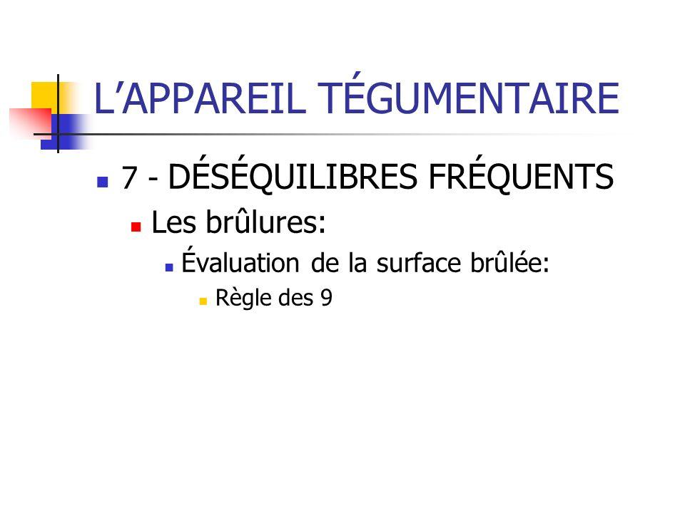 LAPPAREIL TÉGUMENTAIRE 7 - DÉSÉQUILIBRES FRÉQUENTS Les brûlures: Évaluation de la surface brûlée: Règle des 9