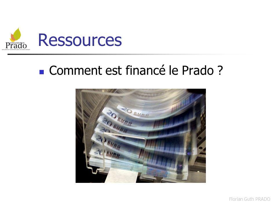 Florian Guth PRADO Ressources financières Le Département du Rhône : 29% Le Département de lIsère : 15% Le Département de lAin : 9% Le ministère de la justice : 25% La Sécurité sociale : 19%
