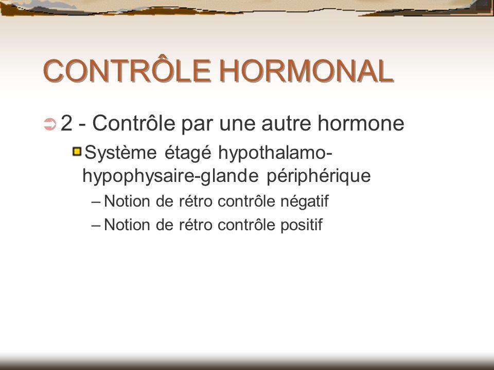 CONTRÔLE HORMONAL 2 - Contrôle par une autre hormone Système étagé hypothalamo- hypophysaire-glande périphérique –Notion de rétro contrôle négatif –No