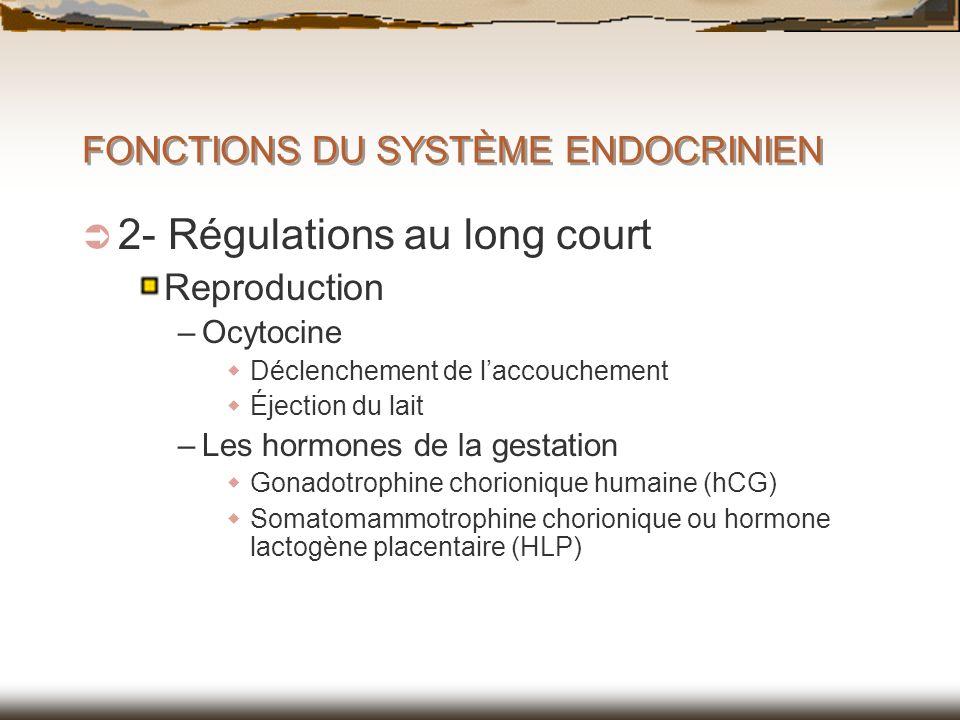 FONCTIONS DU SYSTÈME ENDOCRINIEN 2- Régulations au long court Reproduction –Ocytocine Déclenchement de laccouchement Éjection du lait –Les hormones de