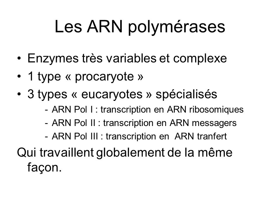 Les ARN polymérases Enzymes très variables et complexe 1 type « procaryote » 3 types « eucaryotes » spécialisés -ARN Pol I : transcription en ARN ribo