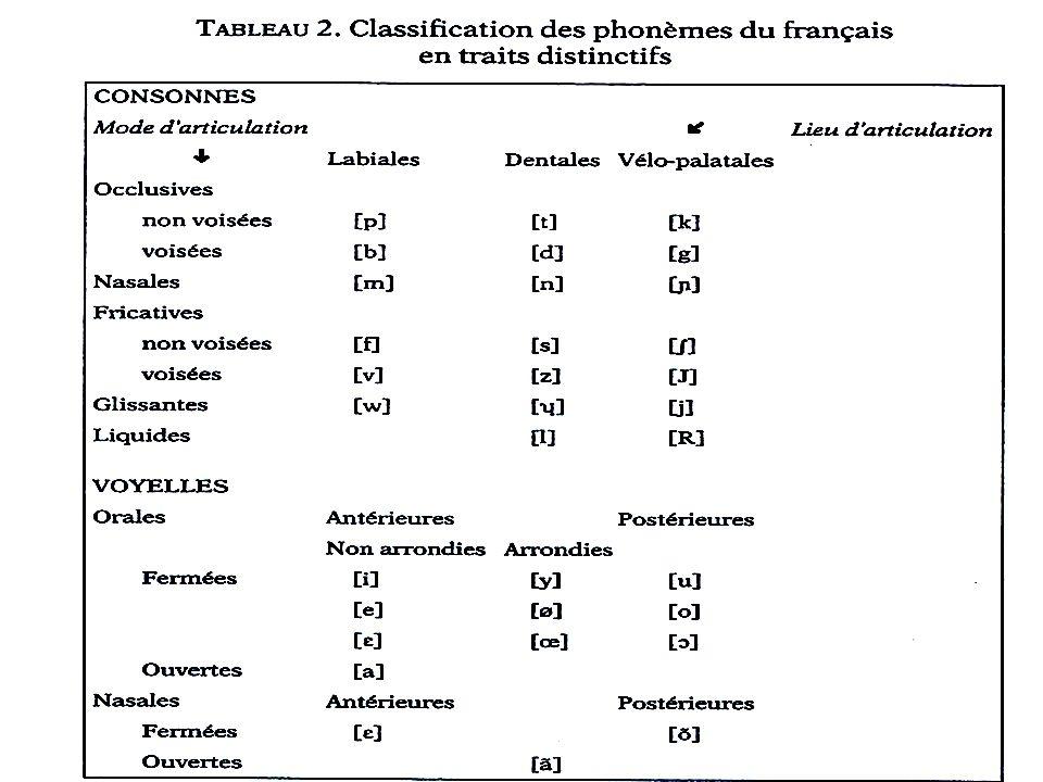 Les caractéristiques articulatoires qui déterminent la prononciation des consonnes en langue française - lieu darticulation : endroit où la voie vocal