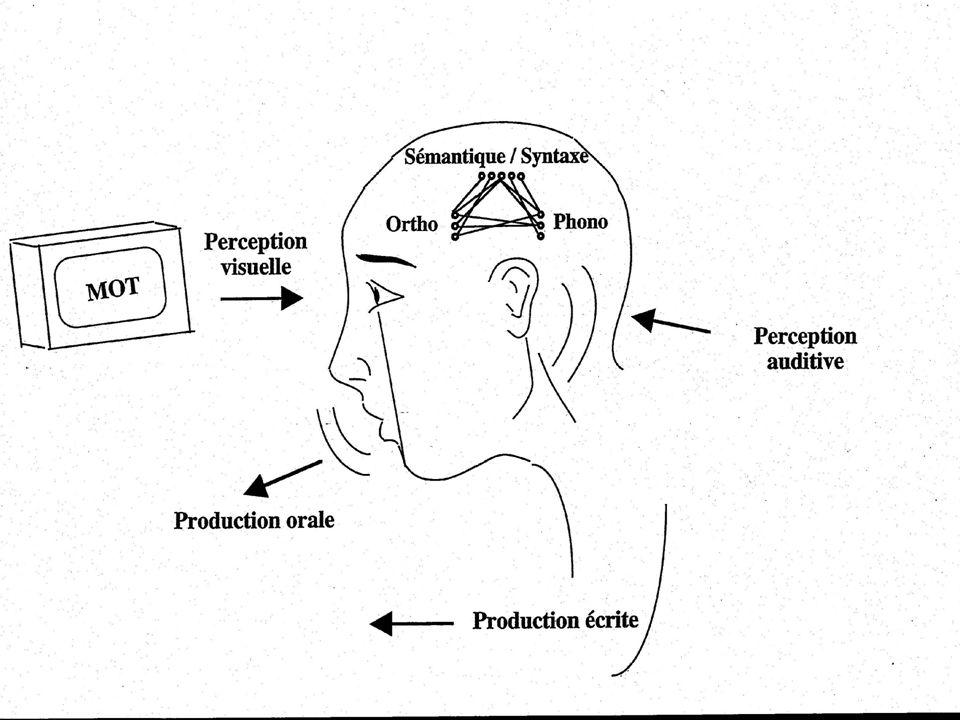 Bibliographie Segui, J. & Ferrand, L. (2000). Leçons de parole. Paris: Odile Jacob Spinelli, E. & Ferrand, L. (2005). Psychologie du Langage, Paris: A
