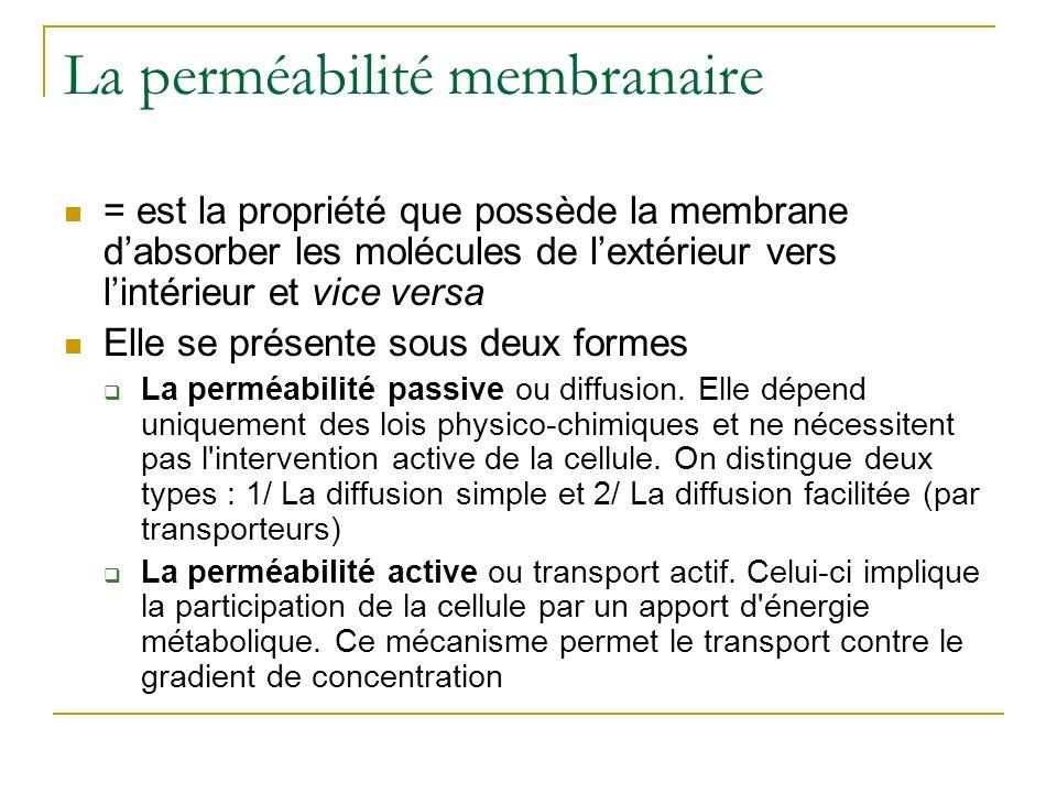La perméabilité membranaire = est la propriété que possède la membrane dabsorber les molécules de lextérieur vers lintérieur et vice versa Elle se pré