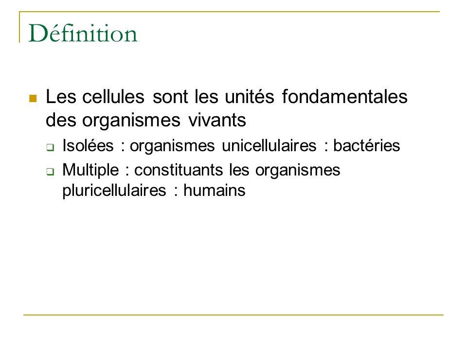 Définition Les cellules sont les unités fondamentales des organismes vivants Isolées : organismes unicellulaires : bactéries Multiple : constituants l