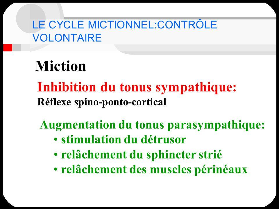 Miction Inhibition du tonus sympathique: Réflexe spino-ponto-cortical Augmentation du tonus parasympathique: stimulation du détrusor relâchement du sp