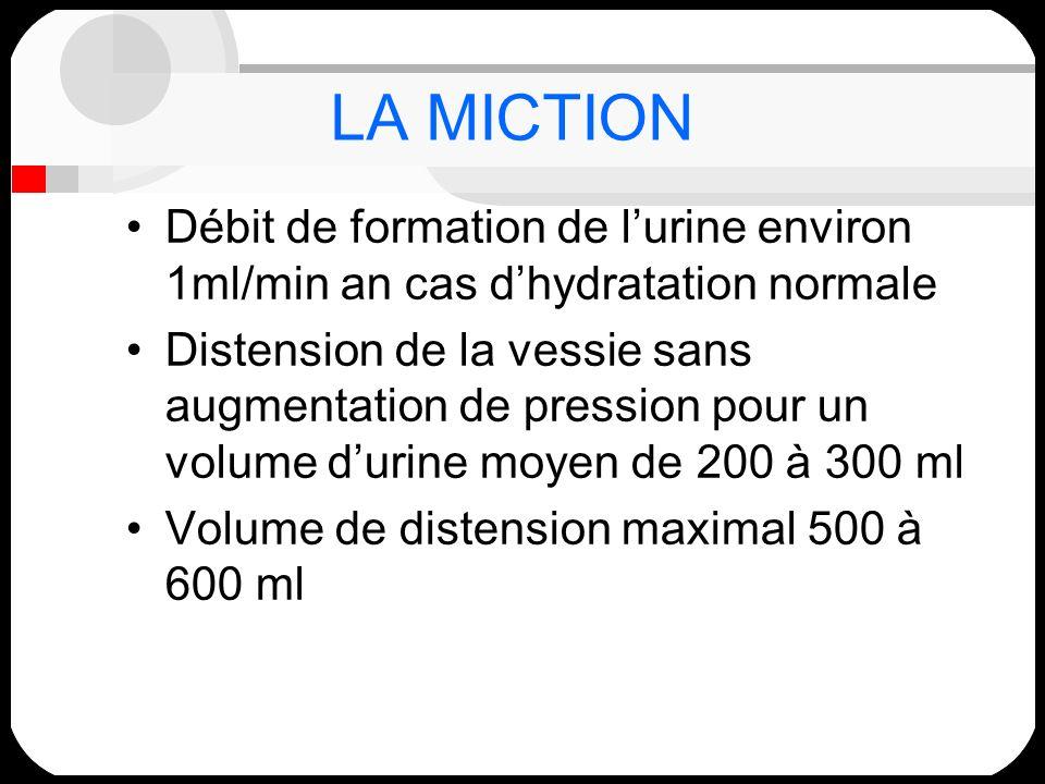 LA MICTION Débit de formation de lurine environ 1ml/min an cas dhydratation normale Distension de la vessie sans augmentation de pression pour un volu