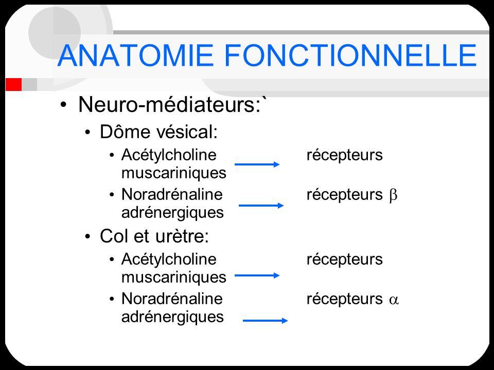 ANATOMIE FONCTIONNELLE Neuro-médiateurs:` Dôme vésical: Acétylcholinerécepteurs muscariniques Noradrénalinerécepteurs adrénergiques Col et urètre: Acé