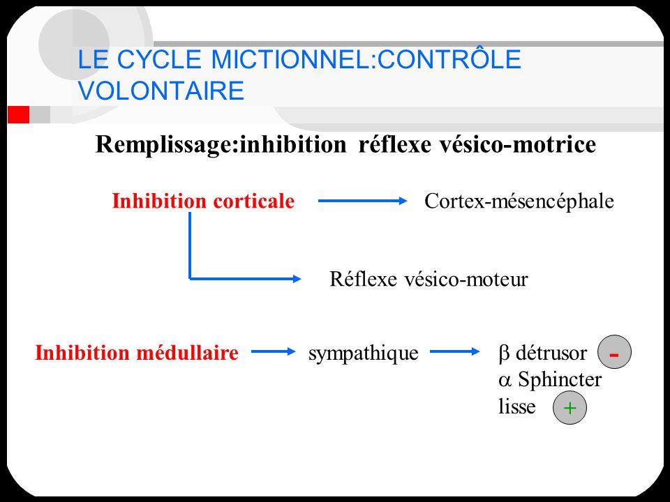 LE CYCLE MICTIONNEL:CONTRÔLE VOLONTAIRE Remplissage:inhibition réflexe vésico-motrice Inhibition corticaleCortex-mésencéphale Réflexe vésico-moteur In