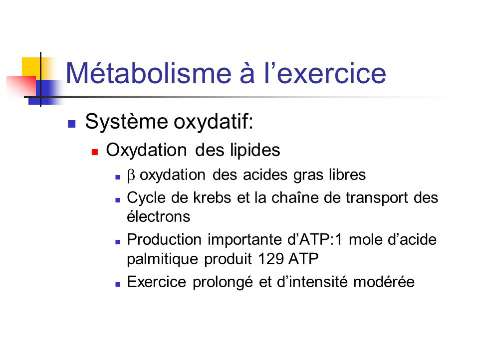 Métabolisme à lexercice Système oxydatif: Oxydation des lipides oxydation des acides gras libres Cycle de krebs et la chaîne de transport des électron