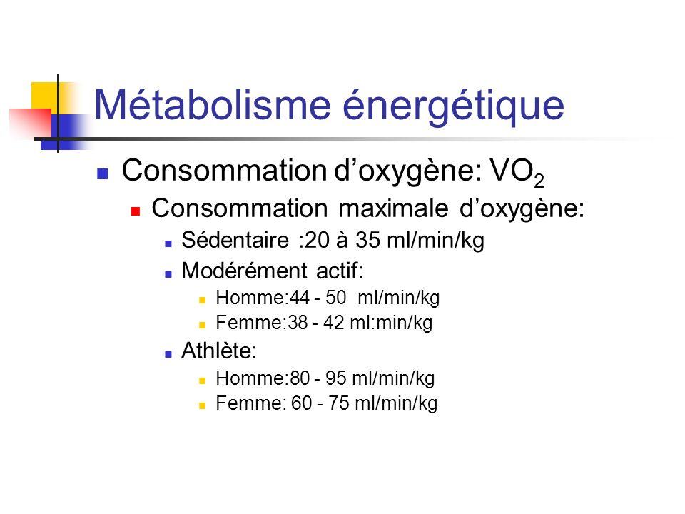 Métabolisme énergétique Consommation doxygène: VO 2 Consommation maximale doxygène: Sédentaire :20 à 35 ml/min/kg Modérément actif: Homme:44 - 50 ml/m
