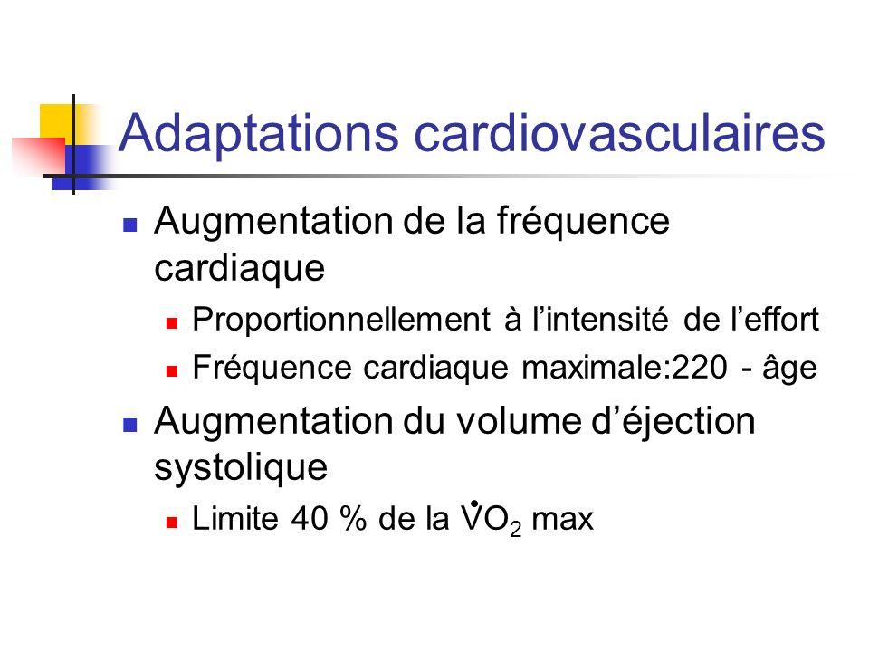 Adaptations cardiovasculaires Augmentation de la fréquence cardiaque Proportionnellement à lintensité de leffort Fréquence cardiaque maximale:220 - âg