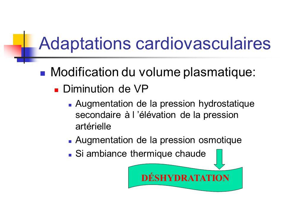 Adaptations cardiovasculaires Modification du volume plasmatique: Diminution de VP Augmentation de la pression hydrostatique secondaire à l élévation