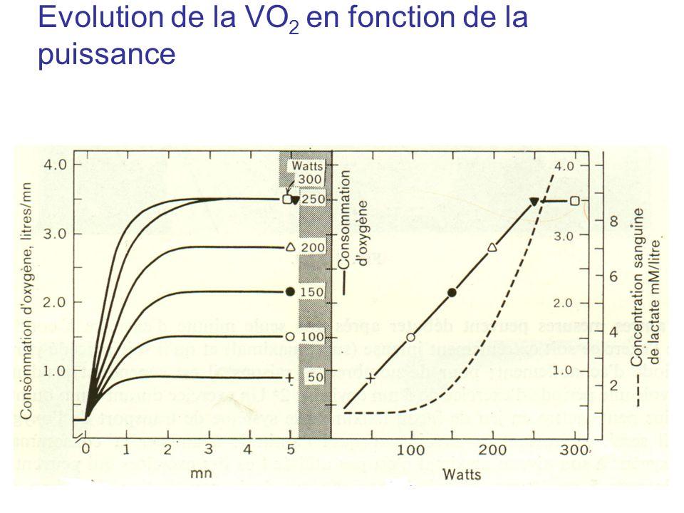 Evolution de la VO 2 en fonction de la puissance