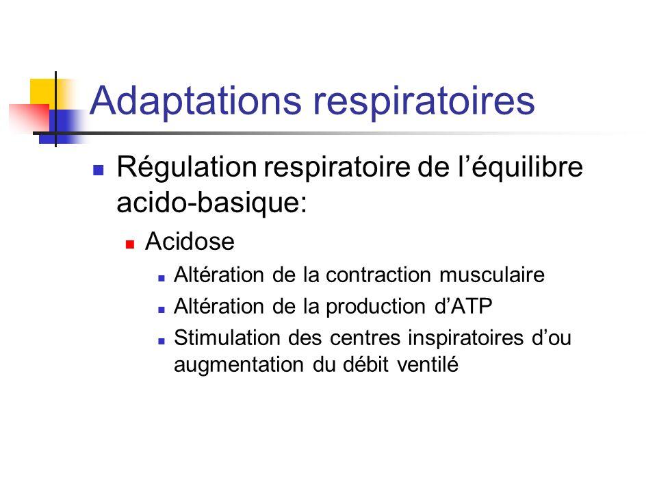 Adaptations respiratoires Régulation respiratoire de léquilibre acido-basique: Acidose Altération de la contraction musculaire Altération de la produc