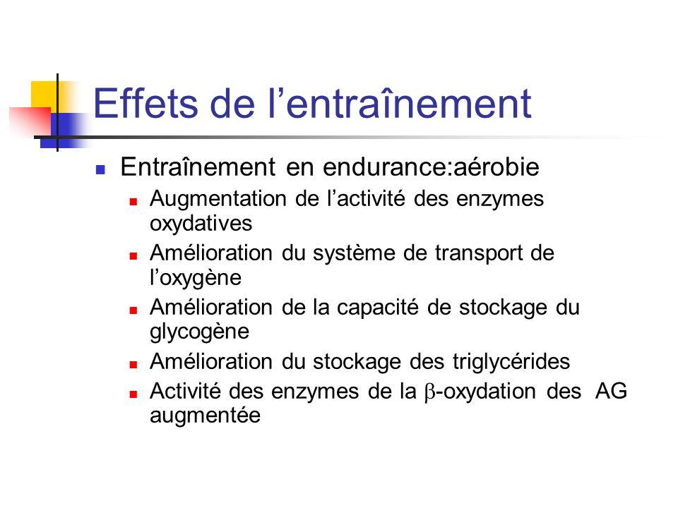 Effets de lentraînement Entraînement en endurance:aérobie Augmentation de lactivité des enzymes oxydatives Amélioration du système de transport de lox