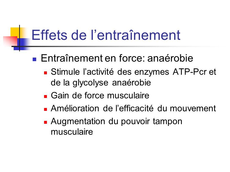 Effets de lentraînement Entraînement en force: anaérobie Stimule lactivité des enzymes ATP-Pcr et de la glycolyse anaérobie Gain de force musculaire A