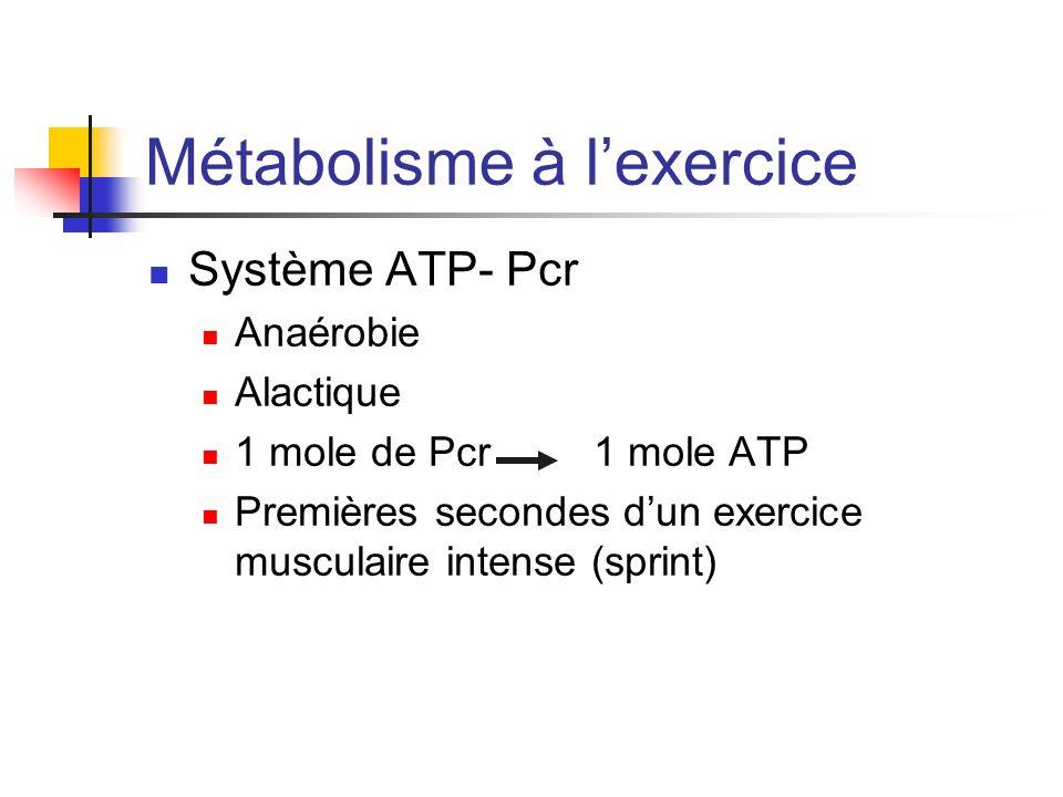 Métabolisme à lexercice Système ATP- Pcr Anaérobie Alactique 1 mole de Pcr 1 mole ATP Premières secondes dun exercice musculaire intense (sprint)