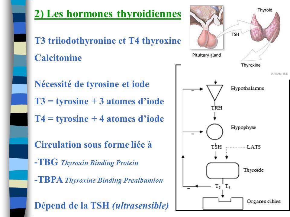 2) Les hormones thyroidiennes T3 triiodothyronine et T4 thyroxine Calcitonine Nécessité de tyrosine et iode T3 = tyrosine + 3 atomes diode T4 = tyrosi