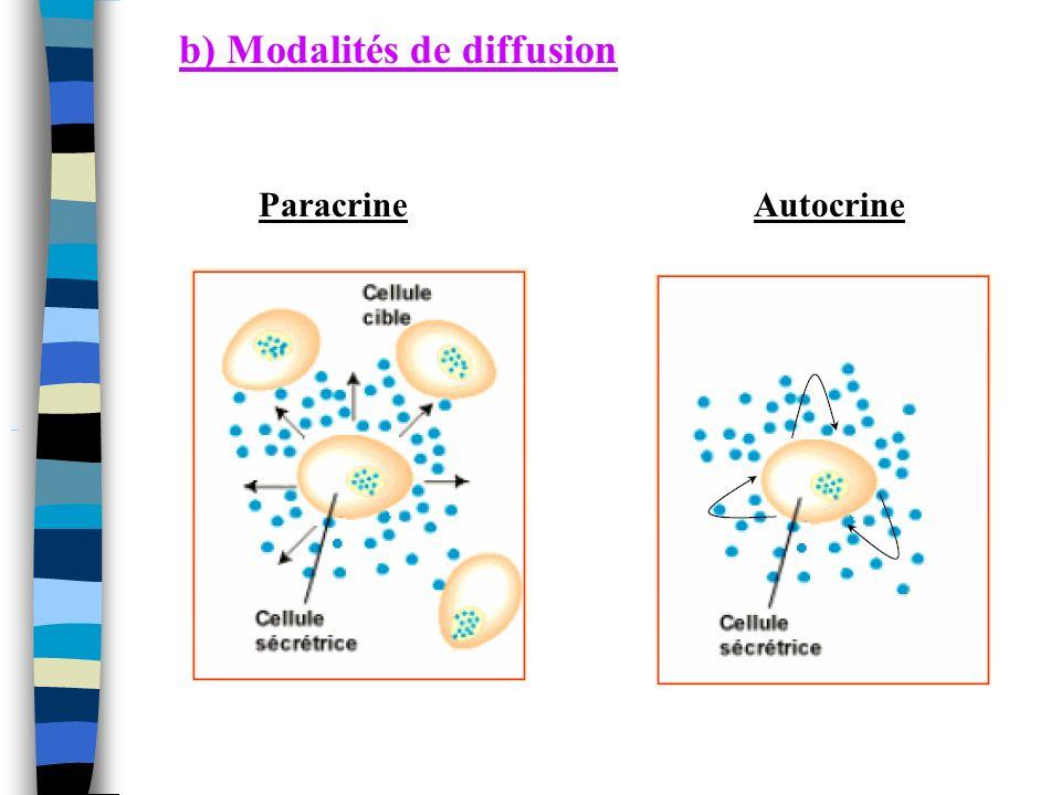 2) Les hormones thyroidiennes T3 triiodothyronine et T4 thyroxine Calcitonine Nécessité de tyrosine et iode T3 = tyrosine + 3 atomes diode T4 = tyrosine + 4 atomes diode Circulation sous forme liée à -TBG Thyroxin Binding Protein -TBPA Thyroxine Binding Prealbumion Dépend de la TSH (ultrasensible)