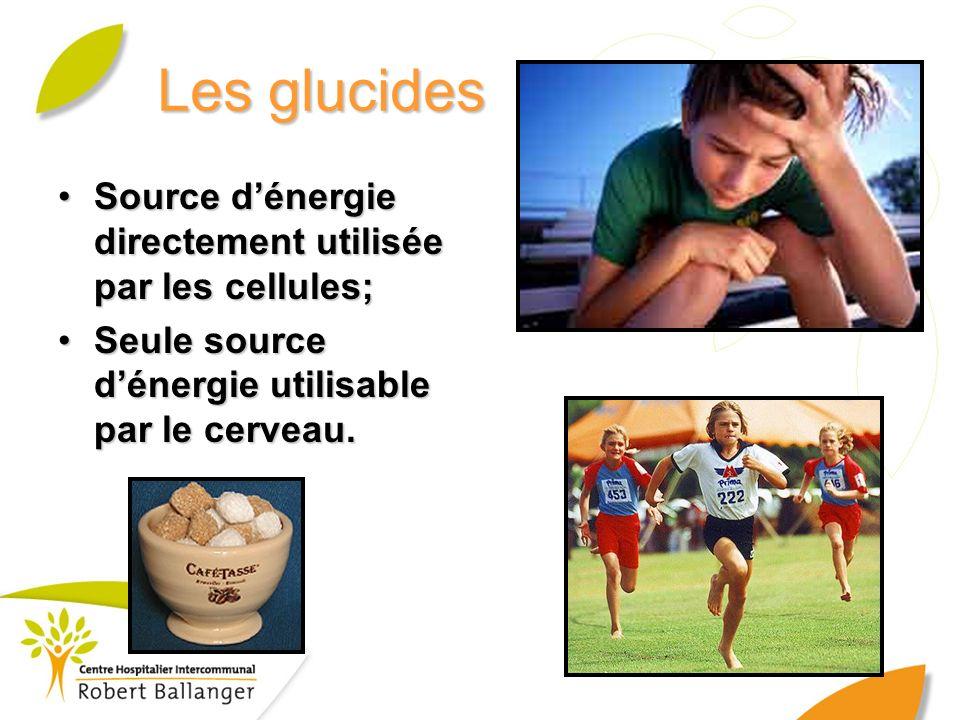Les glucides Source dénergie directement utilisée par les cellules;Source dénergie directement utilisée par les cellules; Seule source dénergie utilis
