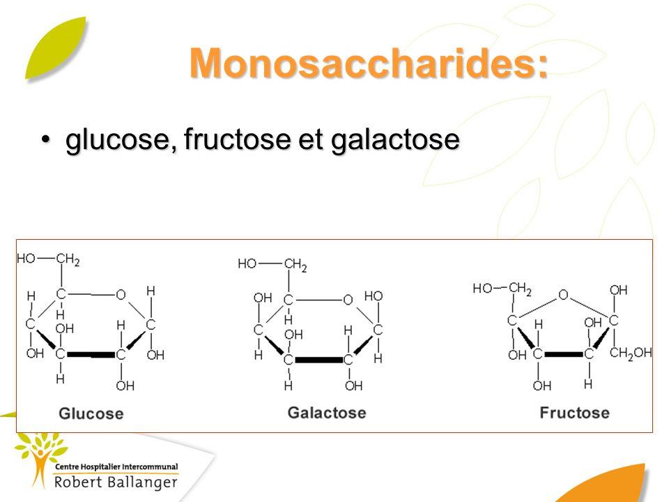 Monosaccharides: glucose, fructose et galactoseglucose, fructose et galactose