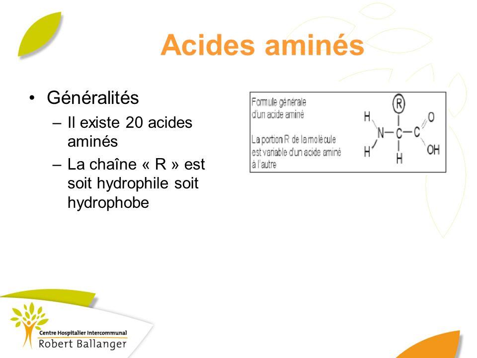 Acides aminés Généralités –Il existe 20 acides aminés –La chaîne « R » est soit hydrophile soit hydrophobe