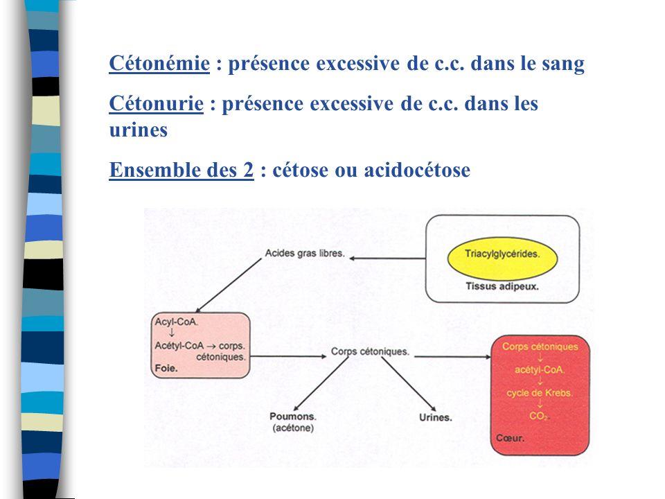 Cétonémie : présence excessive de c.c. dans le sang Cétonurie : présence excessive de c.c. dans les urines Ensemble des 2 : cétose ou acidocétose