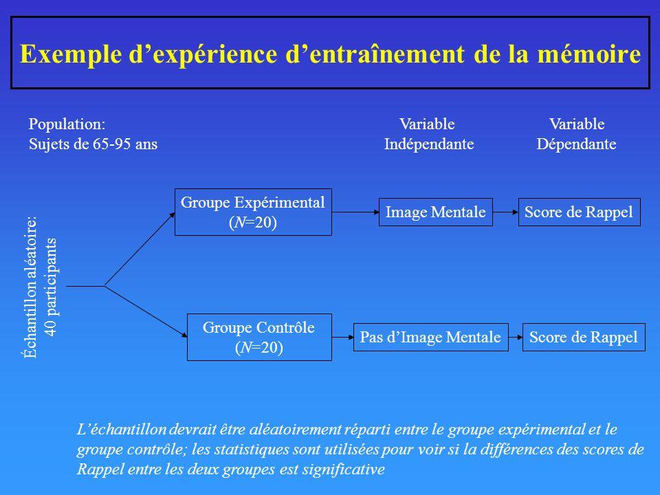 Exemple dexpérience dentraînement de la mémoire Groupe Expérimental (N=20) Groupe Contrôle (N=20) Image Mentale Pas dImage Mentale Score de Rappel Variable Indépendante Variable Dépendante Échantillon aléatoire: 40 participants Population: Sujets de 65-95 ans Léchantillon devrait être aléatoirement réparti entre le groupe expérimental et le groupe contrôle; les statistiques sont utilisées pour voir si la différences des scores de Rappel entre les deux groupes est significative