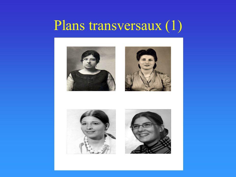 Plans transversaux (1)