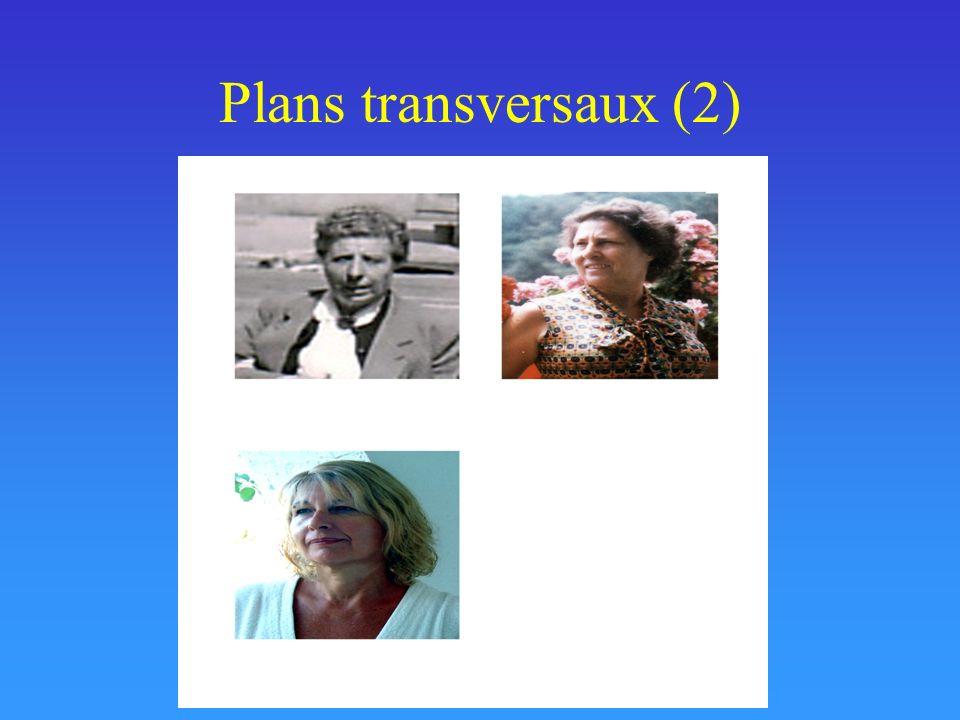 Plans transversaux (2)