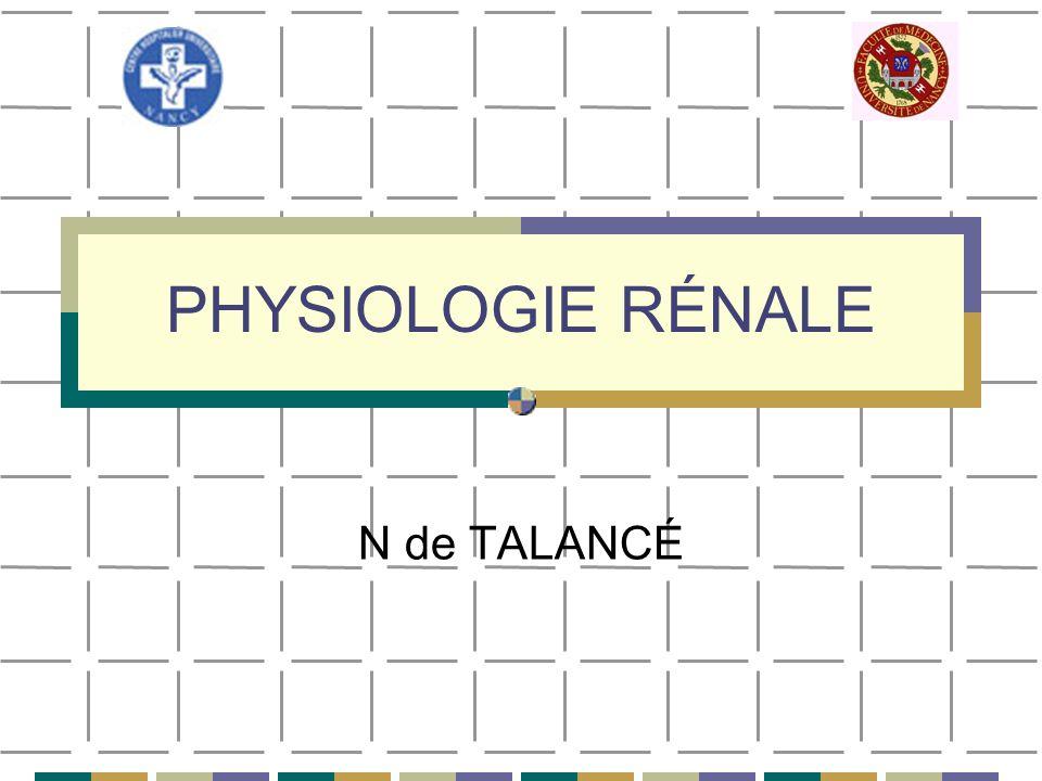 PHYSIOLOGIE RÉNALE 2- Circulation rénale: Modifications physiologiques: Diminution du DSR et du DFG Stress Exercice physique intense et prolongé