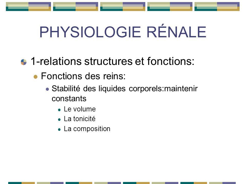 PHYSIOLOGIE RÉNALE 1-relations structures et fonctions: Fonctions des reins: Stabilité des liquides corporels:maintenir constants Le volume La tonicité La composition
