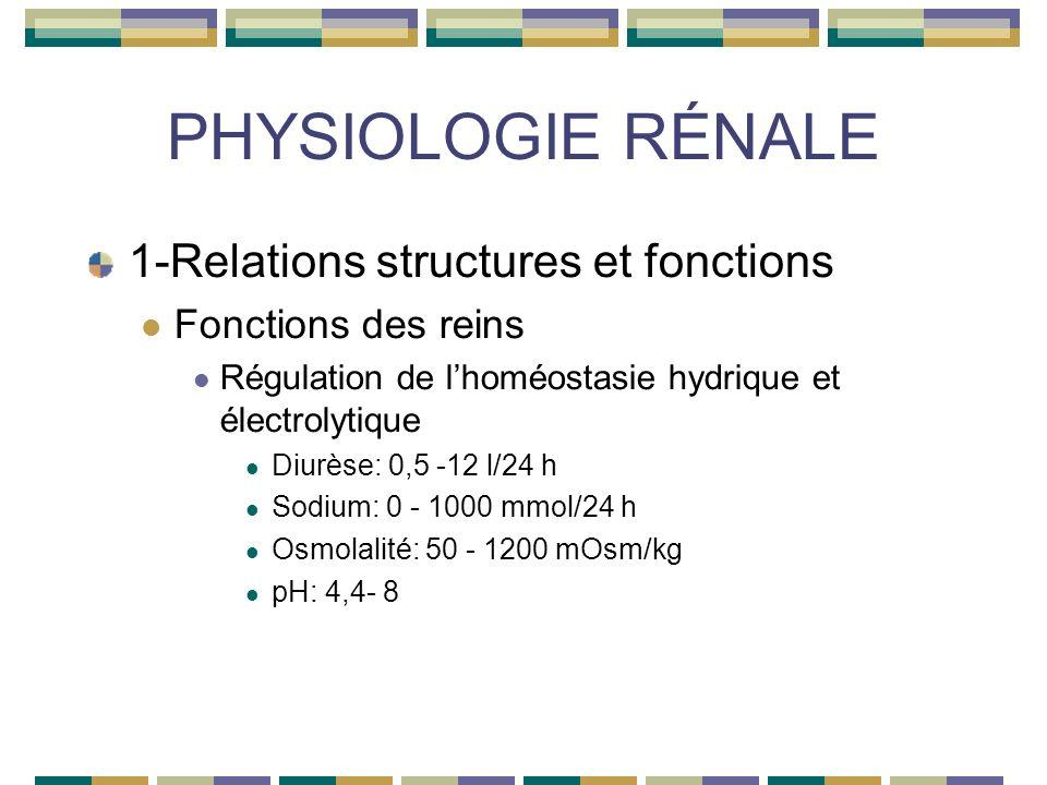 PHYSIOLOGIE RÉNALE 1-Relations structures et fonctions Fonctions des reins Régulation de lhoméostasie hydrique et électrolytique Diurèse: 0,5 -12 l/24 h Sodium: 0 - 1000 mmol/24 h Osmolalité: 50 - 1200 mOsm/kg pH: 4,4- 8