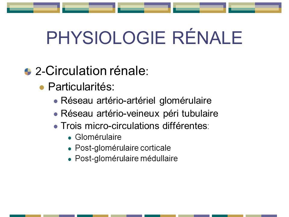 PHYSIOLOGIE RÉNALE 2- Circulation rénale : Particularités: Réseau artério-artériel glomérulaire Réseau artério-veineux péri tubulaire Trois micro-circulations différentes : Glomérulaire Post-glomérulaire corticale Post-glomérulaire médullaire