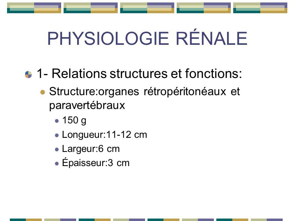 PHYSIOLOGIE RÉNALE 1-relations structures et fonctions: Fonctions des reins: Régulation de lhoméostasie hydrique et électrolytique Eau Sodium/potassium/chlore Calcium/phosphore/magnésium Équilibre acide/base