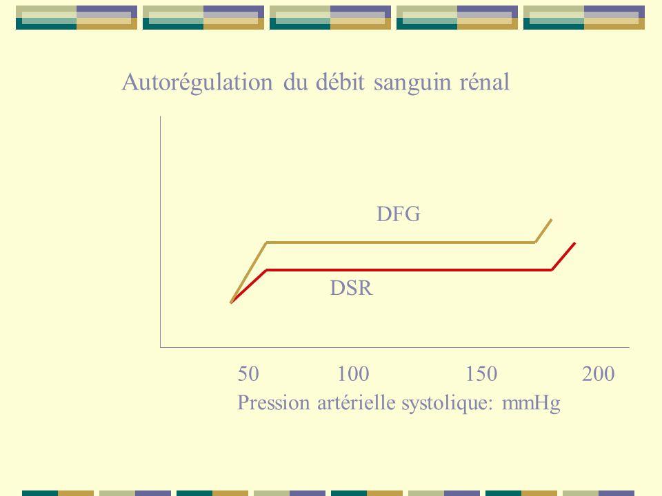 50100150200 Autorégulation du débit sanguin rénal Pression artérielle systolique: mmHg DSR DFG