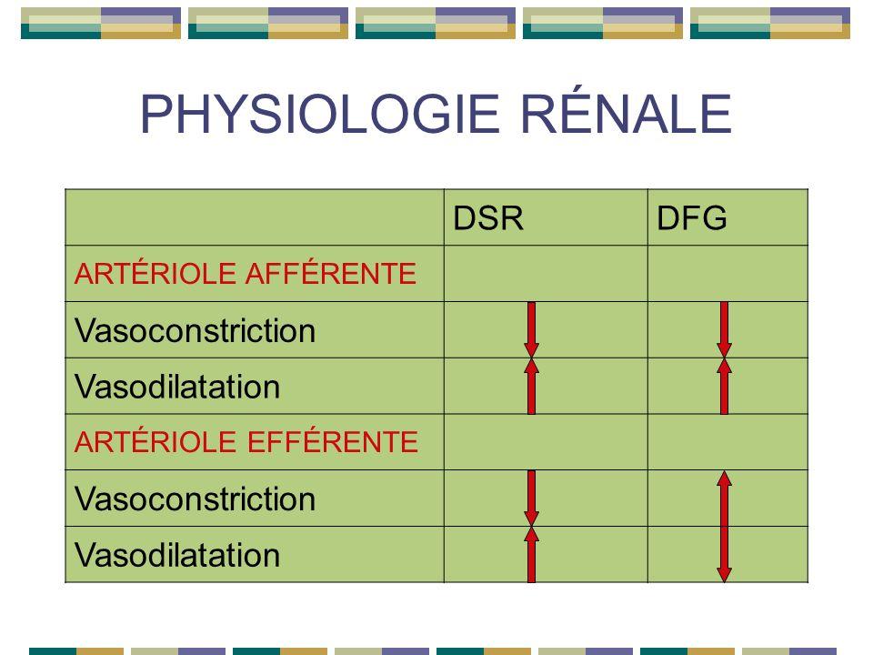 PHYSIOLOGIE RÉNALE DSRDFG ARTÉRIOLE AFFÉRENTE Vasoconstriction Vasodilatation ARTÉRIOLE EFFÉRENTE Vasoconstriction Vasodilatation