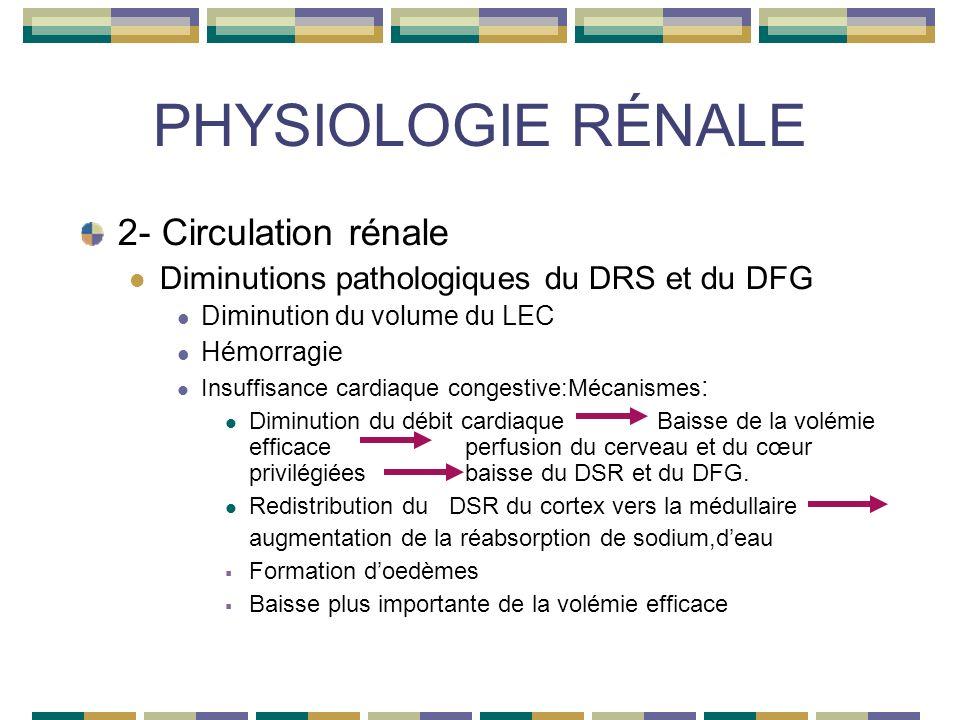 PHYSIOLOGIE RÉNALE 2- Circulation rénale Diminutions pathologiques du DRS et du DFG Diminution du volume du LEC Hémorragie Insuffisance cardiaque congestive:Mécanismes : Diminution du débit cardiaqueBaisse de la volémie efficaceperfusion du cerveau et du cœur privilégiéesbaisse du DSR et du DFG.