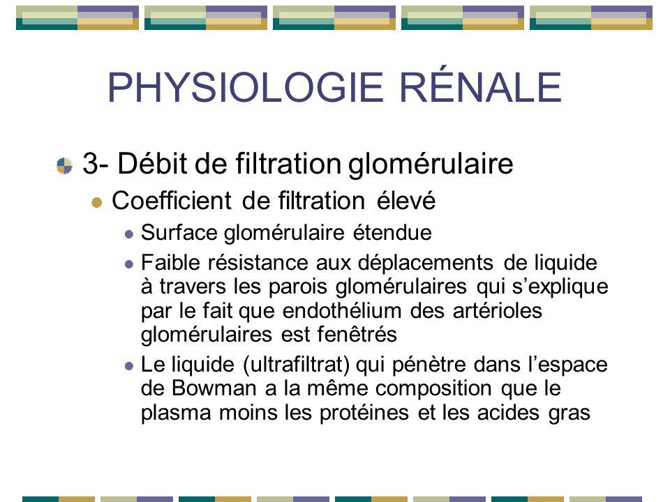PHYSIOLOGIE RÉNALE 3- Débit de filtration glomérulaire Coefficient de filtration élevé Surface glomérulaire étendue Faible résistance aux déplacements de liquide à travers les parois glomérulaires qui sexplique par le fait que endothélium des artérioles glomérulaires est fenêtrés Le liquide (ultrafiltrat) qui pénètre dans lespace de Bowman a la même composition que le plasma moins les protéines et les acides gras