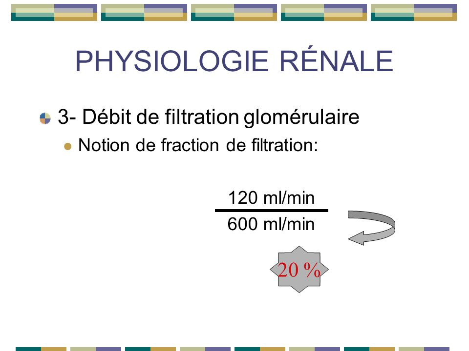 PHYSIOLOGIE RÉNALE 3- Débit de filtration glomérulaire Notion de fraction de filtration: 120 ml/min 600 ml/min 20 %