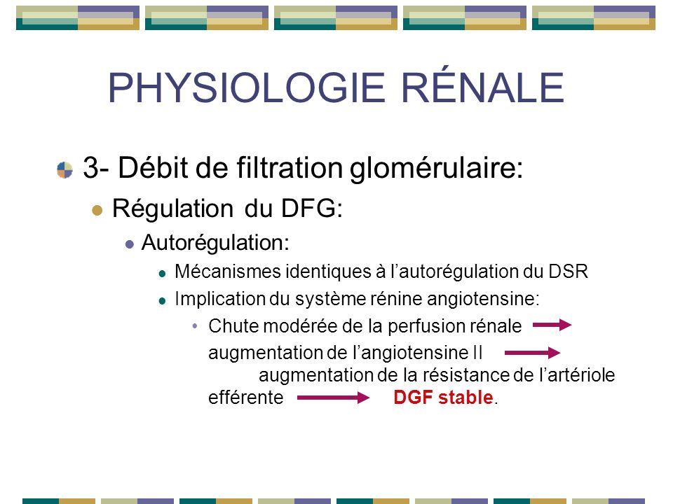 PHYSIOLOGIE RÉNALE 3- Débit de filtration glomérulaire: Régulation du DFG: Autorégulation: Mécanismes identiques à lautorégulation du DSR Implication du système rénine angiotensine: Chute modérée de la perfusion rénale augmentation de langiotensine II augmentation de la résistance de lartériole efférenteDGF stable.