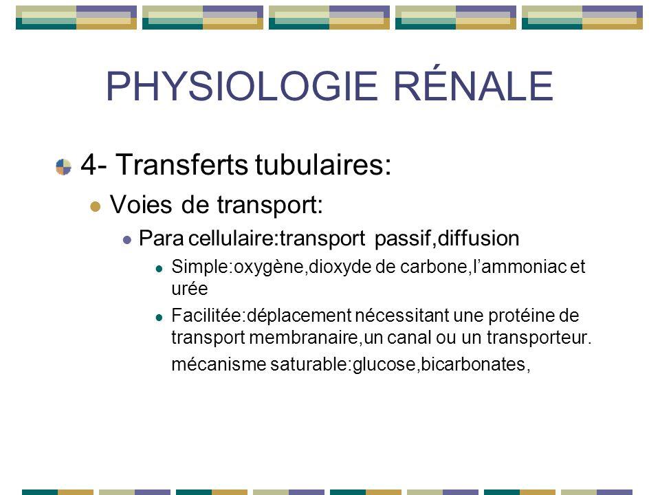 PHYSIOLOGIE RÉNALE 4- Transferts tubulaires: Voies de transport: Paracellulaire:transport passif,diffusion Simple:oxygène,dioxyde de carbone,lammoniac et urée Facilitée:déplacement nécessitant une protéine de transport membranaire,un canal ou un transporteur.