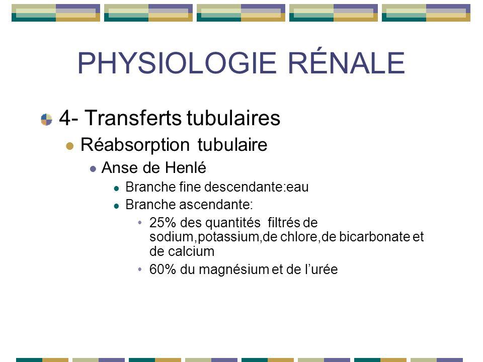 PHYSIOLOGIE RÉNALE 4- Transferts tubulaires Réabsorption tubulaire Anse de Henlé Branche fine descendante:eau Branche ascendante: 25% des quantités filtrés de sodium,potassium,de chlore,de bicarbonate et de calcium 60% du magnésium et de lurée